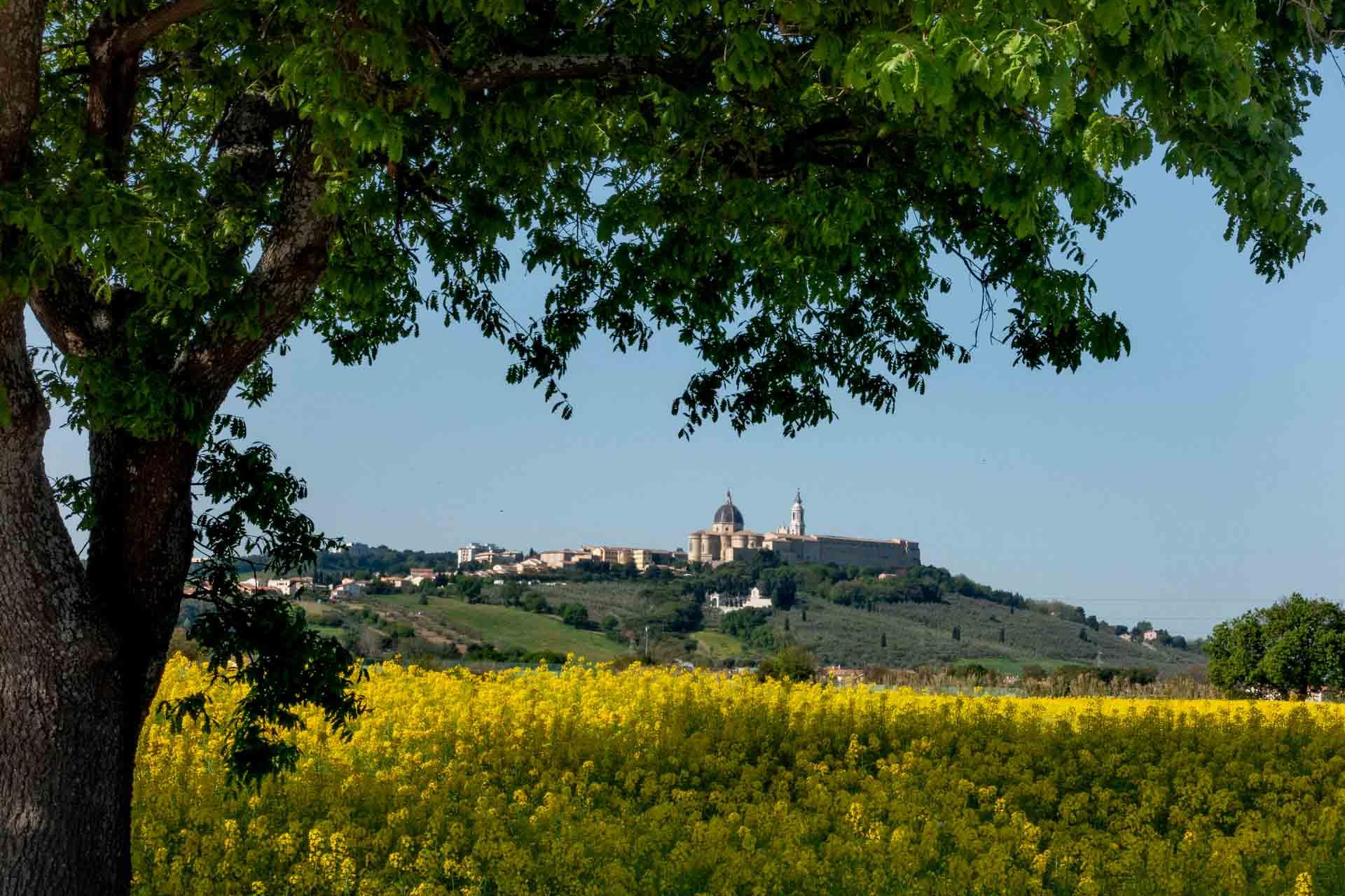 Loreto, panorama